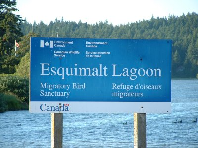 esquimalt lagoon sign